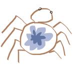 蜘蛛不织网