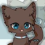 子猫Jun