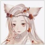 fox-佛克斯狸